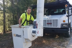 Cherry Picker  Tree Maintenance